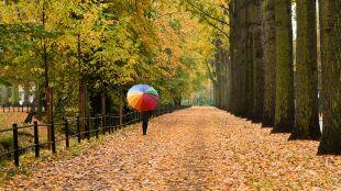 Pogoda na 5 dni: deszczowa aura nas nie opuści