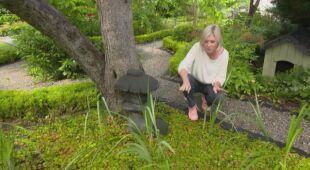 W ogrodzie pod morelą (odc. 720 / HGTV odc. 21 seria 2019)